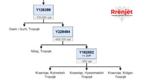Lidhjet gjenetike mes fiseve Gashi i Gurit, Nikaj e Krasniqe sipas analizave me rezolucion të lartë. (ang: Genetic ties between clans (fis) Gash i Gurit, Nikaj and Krasniqe)